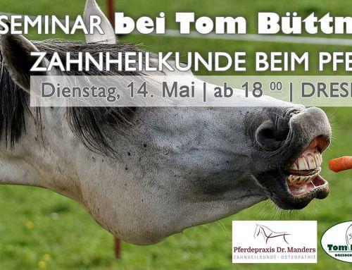 Seminar Zahnheilkunde beim Pferd