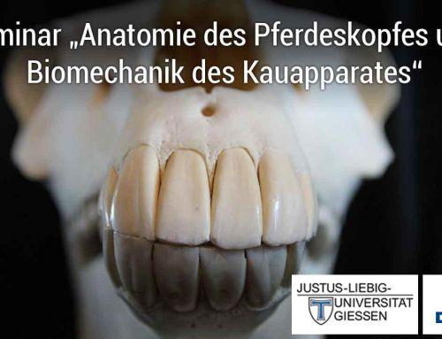 Seminar Anatomie des Pferdeskopfes und Biomechanik des Kauapparates